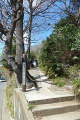 鴨居原市民の森(北地区入口、Kamoihara Community Woods)