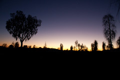 sunrise (monkey_pushover_tree) Tags: red sunrise nationalpark sand desert nt australia outback uluru katatjuta oxide