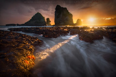 Count Your Lucky Stars - South Island, New Zealand (Luke Austin) Tags: new seascape west island coast starfish south zealand sunbeam sunstar