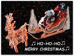 ♫ hohoho ♫ MERRY CHRISTMAS ♫ (martian cat) Tags: cards chibafloralmuseum japan inage thesuperbmasterpiece onblack ©martiancatinjapan merrychristmas allrightsreserved© diamondclassphotographer joyeux noël fröhlichi wiehnacht kurisumasu feliz navidad メリークリスマス buon natale ©allrightsreserved martiancatinjapan© flickrdiamond ☺allrightsreserved allrightsreserved motivationalposter motivational caption captioncollection christmas christmasmemories ☺martiancatinjapan stolenimage creativity stolen forrecords martiancat martiancat© ©martiancat martiancatinjapan