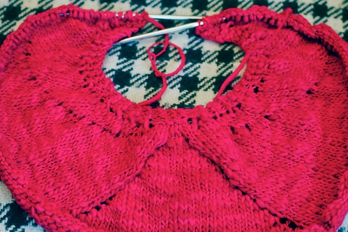 Ruby Lune Shawl: WIP