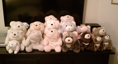 snuffles army (kitkabbit) Tags: bear toys plush collection snuffles gund
