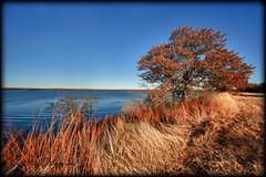 Lake Murray State Park, Oklahoma (Gary P Kurns Photography) Tags: oklahoma landscapes nikon events creative places onone 1424mmf28g