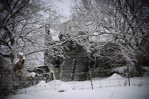 41:365雪谷仓