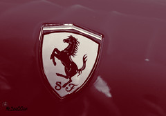 Ferrari (Mr.3zo00oz) Tags: world speed s ferrari age f e fav