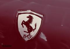 Ferrari (Mr.3zo00oz) Tags: world speed s ferrari age f e fav سياره سباق عالم فيراري مركبه