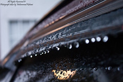Drops of Rain (Mohammad Rehawi | Evil Hard) Tags: