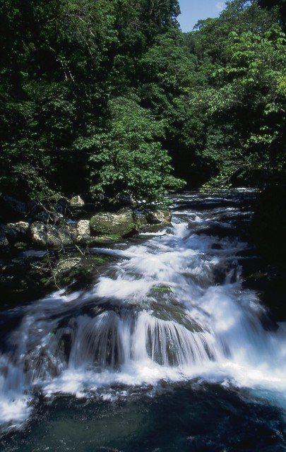 渓流のフリー写真素材