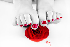 my toes and a rose (funkygreeneyedlady) Tags: roses toes paintedtoes mearlegateseroticnudetumwater spotcoloringbbwtoes bbwfeetpaintedtoenailsrosesnudeshotsheadshotsbeautifulbbwmodeling