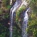 Bellaringa (Twin Falls)