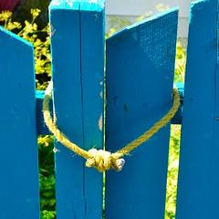 Be Mine (Joanne Dale) Tags: blue canada love fence newfoundland togetherness hug couple peace post joy stjohns bemine happyvalentinesday nikond90 joannedale