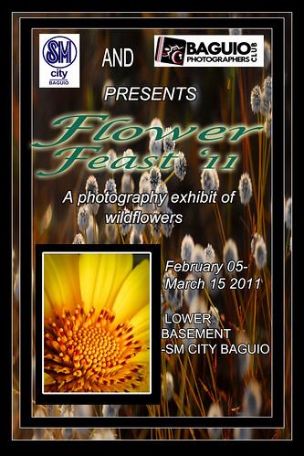 Flower Feast 2011