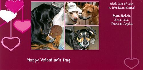 Valentine2011