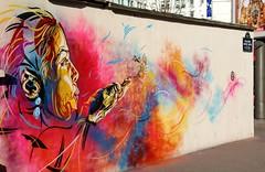 C215 - Paris (FR) (C215) Tags: streetart art french graffiti stencil christian pochoir 75013 masacara szablon c215 schablon gumy piantillas