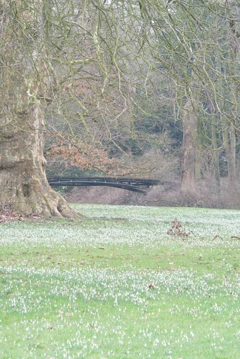 sneeuwklok 2011 brug