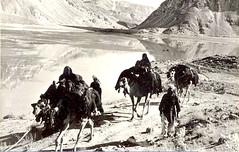 Afghanistan - Nomadic Group c 1940s (ronramstew) Tags: afghanistan tribal 1940s afghan tribe camels nomads nomadic