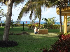 Uncrating a Bike (Hear and Their) Tags: club amigo hotel cuba atlantico guardalavaca