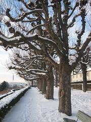 Zürich, Dec 2010
