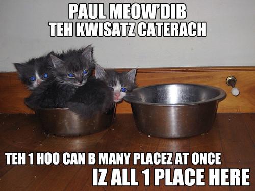 Paul Meow'Dib teh Kwisatz Caterach