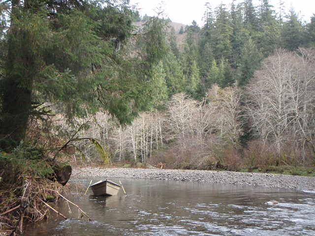 winter steelhead fly fishing