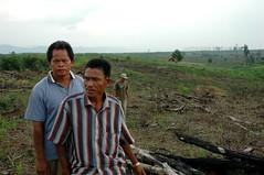 DSC_0890 (mitrataj) Tags: forest sumatra indonesia village violence conflict hutan deforestation riau hulu pulpwood rokan