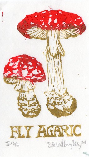 Fly Agaric 2nd edition