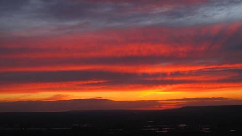 sunset-bluebell-hill