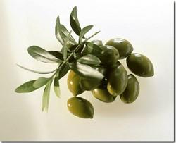 手工皂專用橄欖油-20101021170004_m