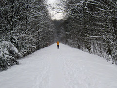 Vlklingen - Lonely jogger (.patrick.) Tags: railroad schnee winter snow abandoned forest way ancient eisenbahn wald jogger weg saarland waldweg lufer vlklingen ehemalig foresttrail kllertalbahn