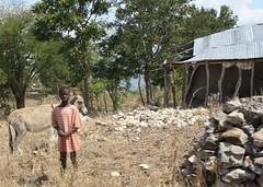 Haiti - 1716