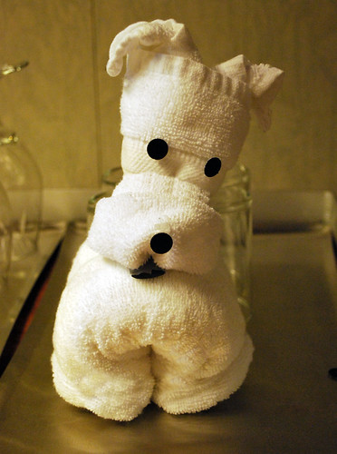 Towel Puppy 1