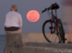 As big as that dude (John Osegovic) Tags: moon stpetersburg tampabay supermoon