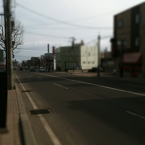 札幌に春がきてた!