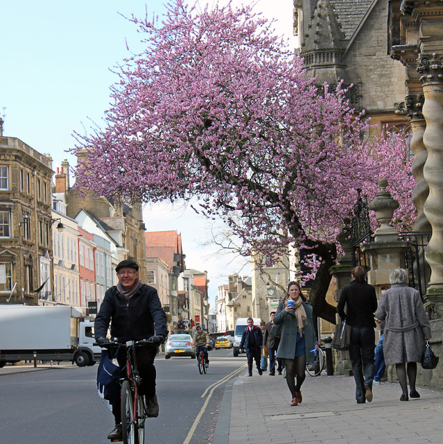 Cyclist on High Street
