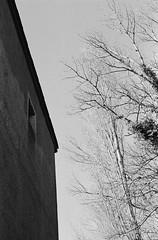 (Blackeyedog) Tags: winter light shadow blackandwhite bw white abandoned film analog 35mm canon 50mm decay ombra nowhere finestra 135 rodinal 130 legacy bianco luce umbria biancoenero analogica oneshot rudere rovine pellicola abbandono umbra r09 autaut legacypro agfar09oneshot freestylearistalegacypro