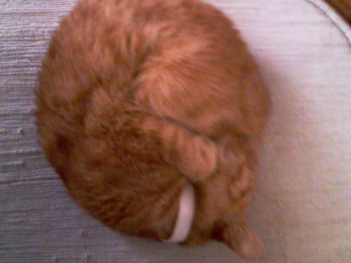 clem curled into the tightest ball ever.