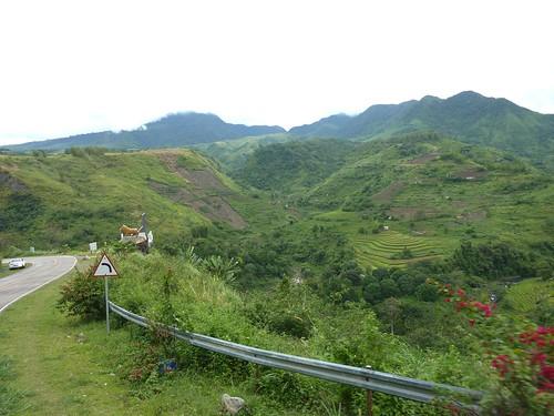 Negros-San Carlos-Bacolod (106)