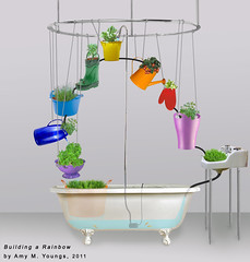 Building a rainbow sketch (Amy M. Youngs) Tags: plants fish art collage sketch installation bathtub thriftstore worms ecosystem vermiponics