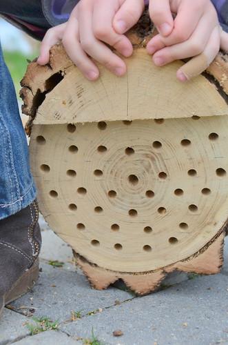 Make a mason bee nest