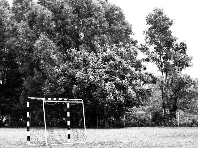 IMG_1516 Goal - black and white