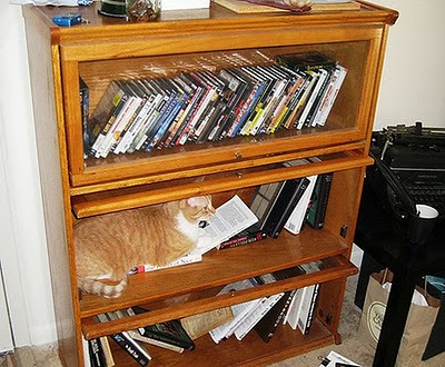 organize_your_cats_03