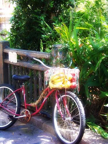 Edited Bike