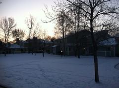 Woke up to snow (f l a m i n g o) Tags: morning snow april 14th monday 2014