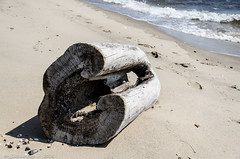 Horseshoe Cove - XXV (RGL_Photography) Tags: newjersey highlands unitedstates monmouthcounty jerseyshore sandyhook forthancock gatewaynationalrecreationarea horseshoecove nationalparksystem nikon18105mmf3556vr nikond7000 sandyhookprovinggrounds