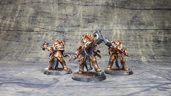 Storm Cast Paladins (Storm Hammer Painting) Tags: paladins stormcast eternals stormhammerpainting gamesworkshop hobby miniatures paintingwarhammer paintingminiatures painting