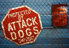 Specific (Jadydangel) Tags: old blue red color texture sign metal rural writing fence words rust bright letters rusty chainlink stop signage protected attackdogs oxidized specific cmwdred jadydangel omgcoloryay protectedbyattackdogs