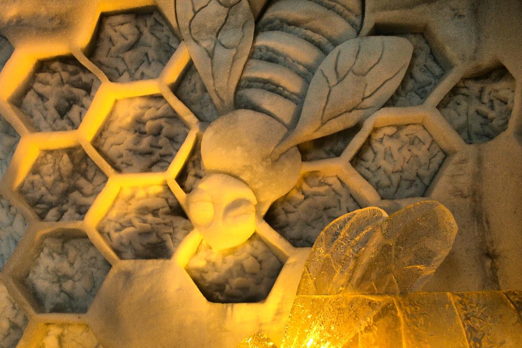 Abeille - Suite de la ruche - Hôtel de glace