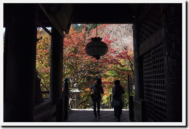 20101119_112112_長谷寺_本堂(国宝)