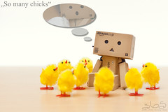 So many chicks (Oliver Totzke) Tags: 2 chicken canon easter 50mm mark egg days ii 1d chicks 365 18 danbo mark2 revoltech danboard