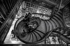Lello & Irmo (Antnio Alfarroba) Tags: stairs space porto escada bookshop oporto lello livraria dinamism lelloirmo